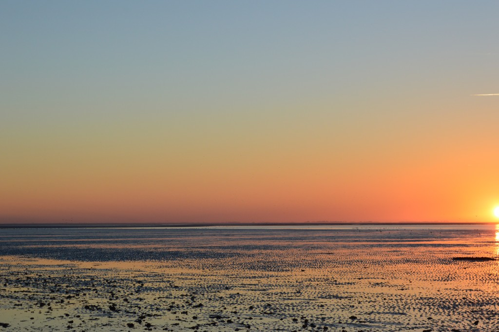 Sunset at RSPB reserve Snettisham